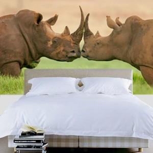 rinocerontes fotomural